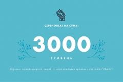Сертифікат на суму 3000 грн.